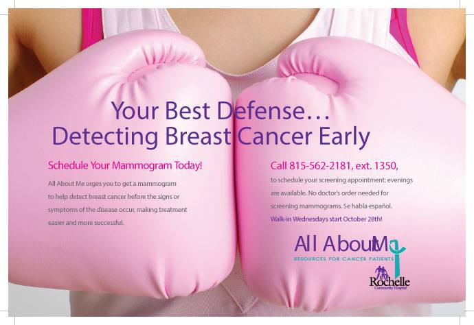 Literature Review On Breast Cancer